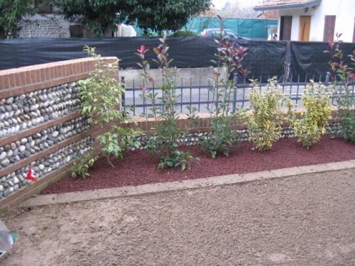 piccolo giardino a povegliano - durante (2)